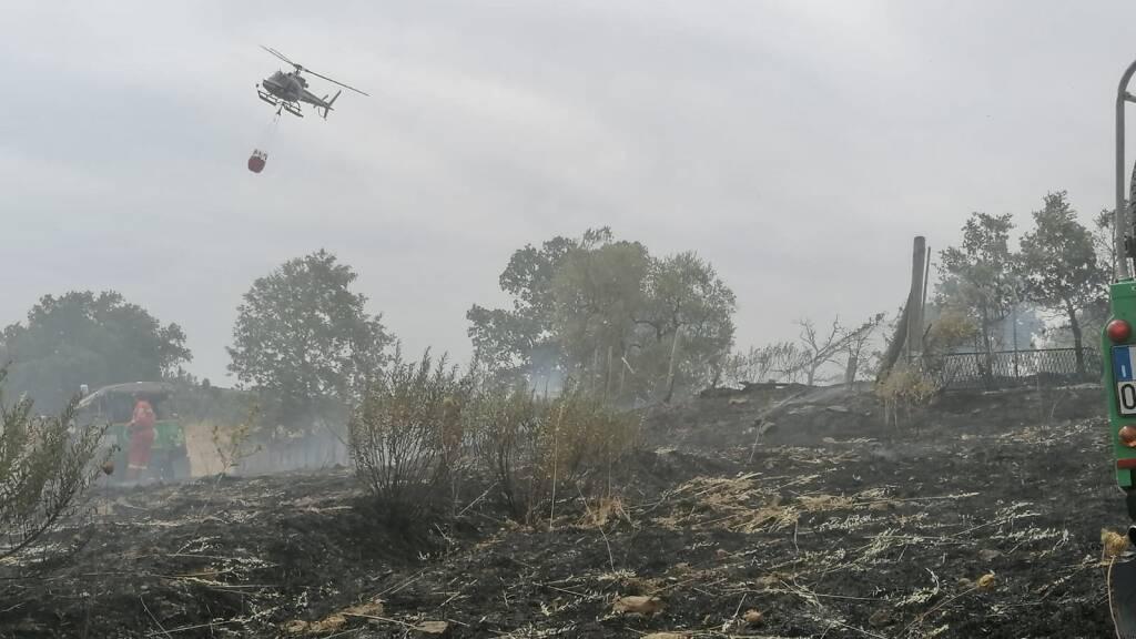 Incendio Scansano 4 agosto 2021
