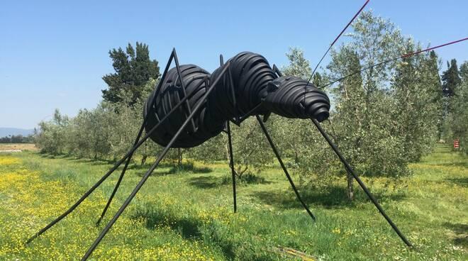 scultura Lacquaniti