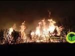 incendio Poggio del Leccio