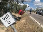 incidente strada Trappola