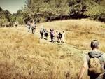 Parco faunistico del Monte Amiata