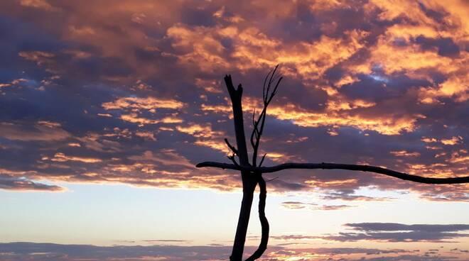 foto del giorno - tramonto di Paola D'arrigo