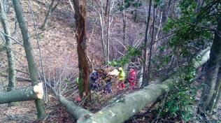 soccorsi nel bosco