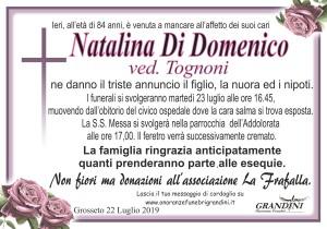 manifesto Di Domenico